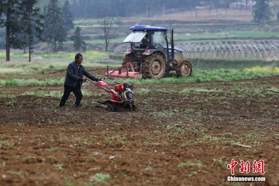 <p>贵州省丹寨县兴仁镇甲脚村,农民在田间耕作。 中新社记者 贺俊怡 摄</p>