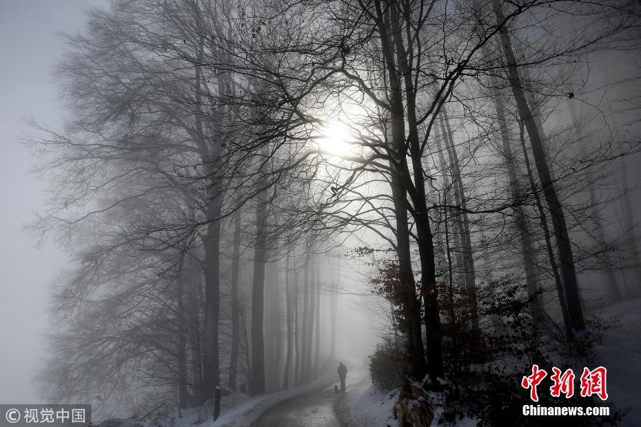 <p>当地时间2018年3月4日,瑞士伯尔尼,晨雾时分,一名男子带着他的狗穿过一片森林。图片来源:视觉中国</p>