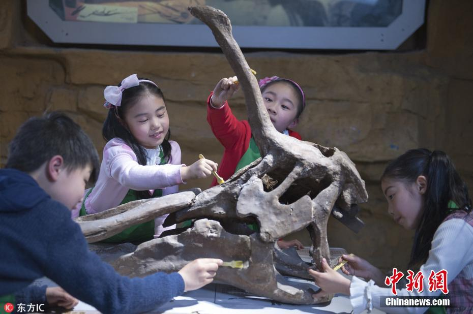 "<p>3月21日,海外追缴国宝级化石特展《龙归故里》在江苏常州中华恐龙园正式对公众开放,拉开了中华恐龙园第七届恐龙文化节的序幕。</p>  <p>据了解,此次《龙归故里》特展由中国地质博物馆、中国海关博物馆、国家古生物化石专家委员会办公室主办。集中展出了近年来从海外追缴的恐龙蛋窝、中国潜龙、陆龟、剑齿虎等国宝级化石。每一块国宝级化石背后都有一个曲折的故事。尤其是领衔本次特展的恐龙蛋窝化石,恐龙蛋窝是22枚窃蛋龙的蛋在一起形成的化石,其中19枚恐龙蛋中还含有初具雏形、蜷缩一团的小恐龙胚胎,有的骨骼轮廓已经相当清晰,极其罕见的恐龙蛋组列方式,具有极高的研究价值,它们第一次亮相是在美国的一场拍卖会上,最早以42万美金成交。历经各部门5年多不懈努力,恐龙蛋窝终于回到祖国的怀抱。</p>  <p>作为此次特展的承办方,中华恐龙园负责人表示,这些国宝级化石能够在中华恐龙园重聚,一方面展示了我国相关部门在保护古生物化石、打击化石走私和开展化石海外追索方面所做的努力和取得的成果,让全社会共同关注、抵制化石走私行为;同时,这些国宝级化石来到常州特展也是一次""回家""的旅程,他们将利用人工智能技术,让游客参观的同时,也能感受到""活起来""的恐龙。</p>  <p>记者在恐龙馆看到,游客在参观恐龙化石时,用手机直接拍摄相关恐龙图片,就可以将恐龙""召唤""到自己的手机上,实现模拟考古,最后一起""复活恐龙""。 沈柯辛 摄 图片来源:东方IC 版权作品 请勿转载</p>"