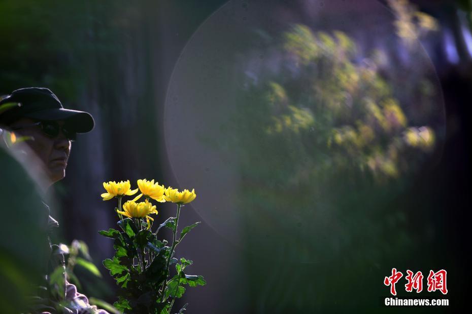 <p>一位抗战老兵后代手捧菊花在远征军墓碑旁缅怀先烈。 中新社记者 李进红 摄</p>