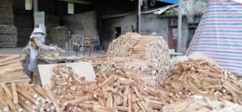 西双版纳保护区长期存违建:管护站出租土地建水厂